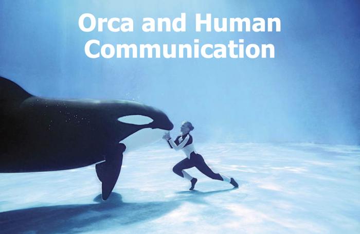 orca-communication