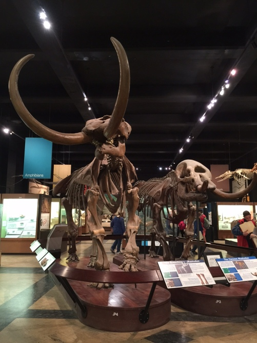 History 9 Ann Arbor Natural History April 2016