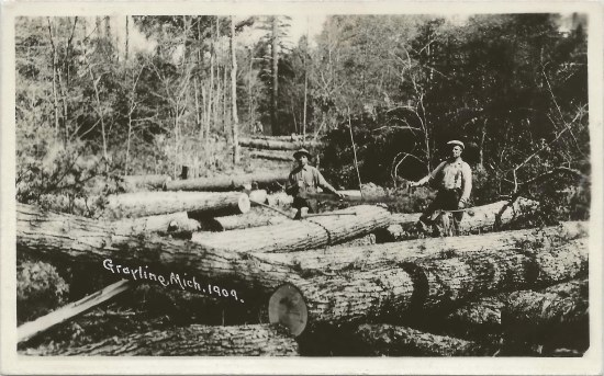 History-mystery-6-white-pine-jpg