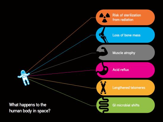 bodiesInSpace2
